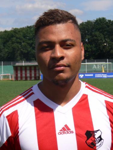 Mario Bickel