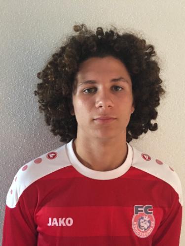 Sandro Boric