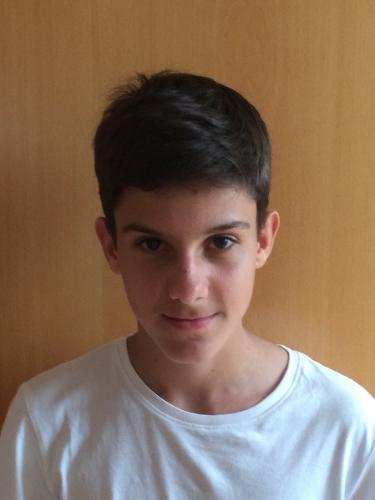 Stipe Ravlic