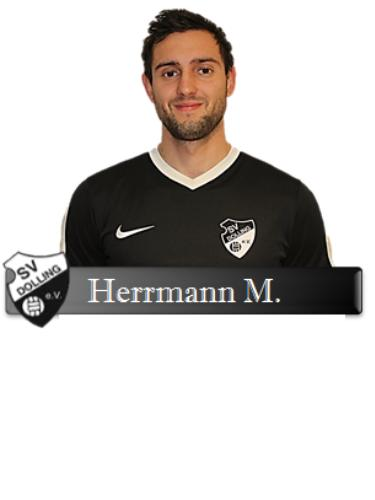 Manuel Herrmann