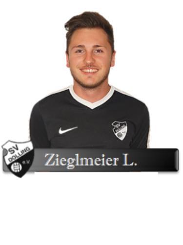 Ludwig Ziegelmeier