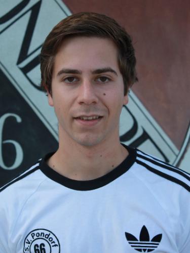 Niklas Brickl