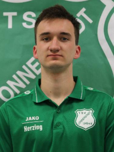 Hugo Herzing