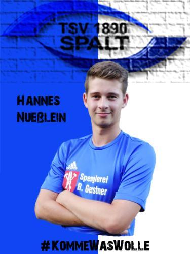 Hannes Nüßlein