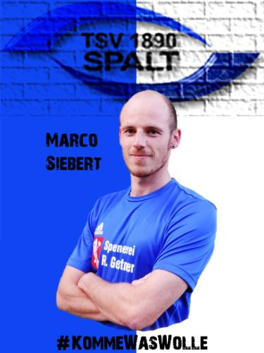 Marco Siebert