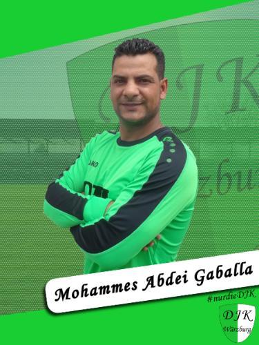 Mohammes Gaballa