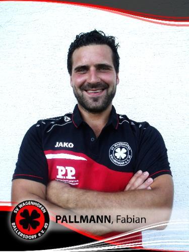 Fabian Pallmann