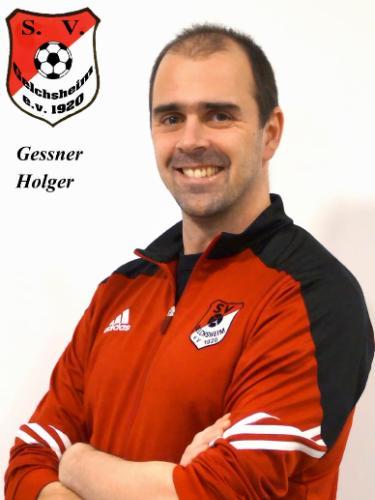 Holger Gessner