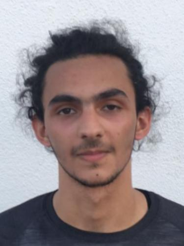 Mohamad Aldebes