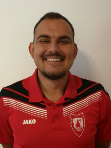 Miroslav Kalin